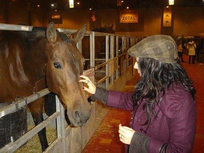 cuadra-con-caballos-en-fibes