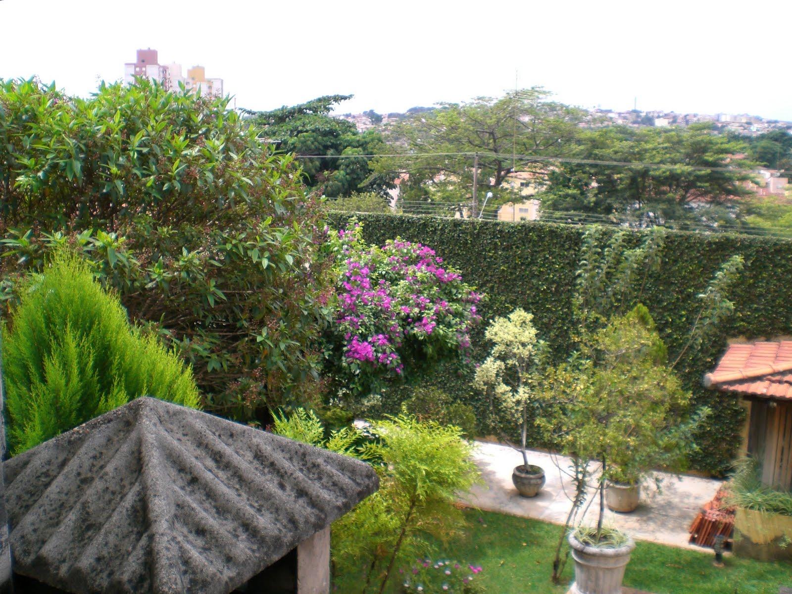 meu quintal meu jardim : meu quintal meu jardim:Alguns cantinhos do meu quintal jardim que eu prezo demais..é