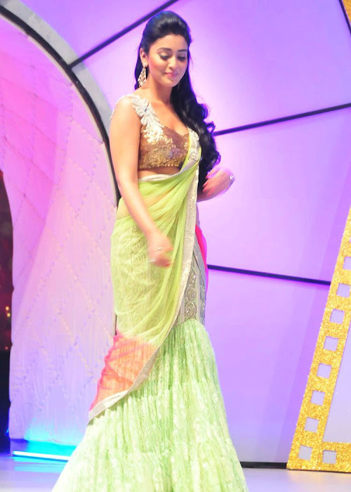 Shriya Saran in Fish Style Ghagra Choli in Star Awards Function