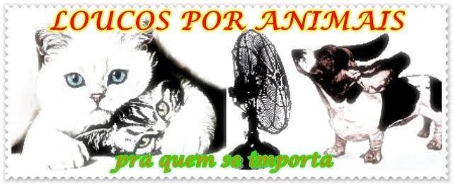 LOUCOS POR ANIMAIS