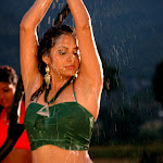 South Indian Hotty Sindhu Tholani Milk Bath Dance - Very Hot And Spicy Pics