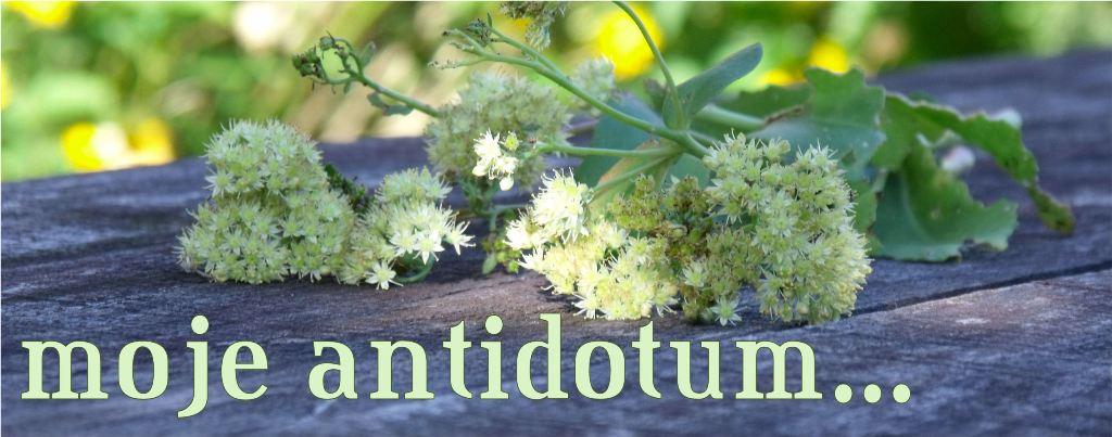 moje antidotum...