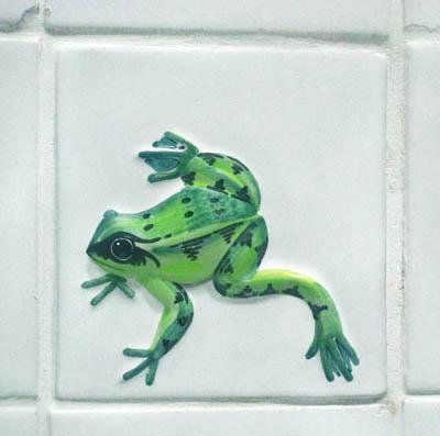 [frogs_09.jpg]
