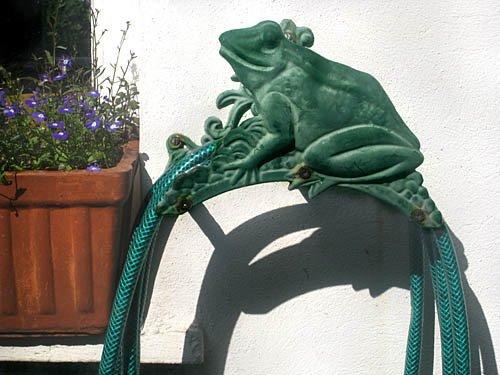 [frogs_01b.jpg]