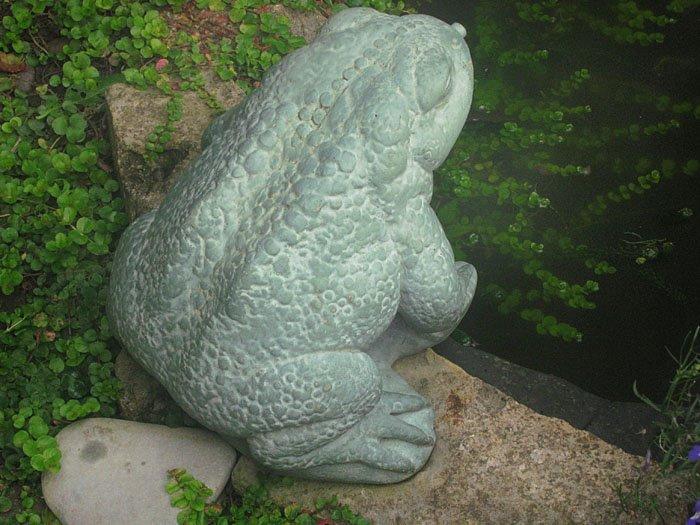 [frogs_01a.jpg]