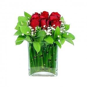 bunga ulang tahun: dekorasi tanaman & bunga hiasan natal