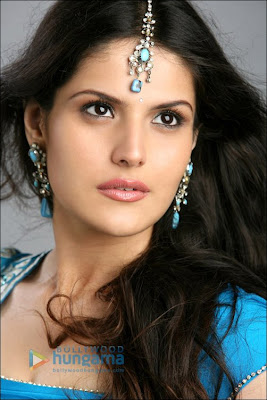 Zarine Khan Background and Beautiful Pics