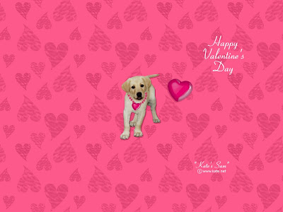 Valentine Days