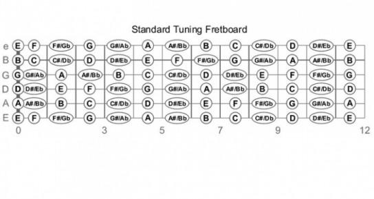 Guitar parts fretboard ccuart Choice Image