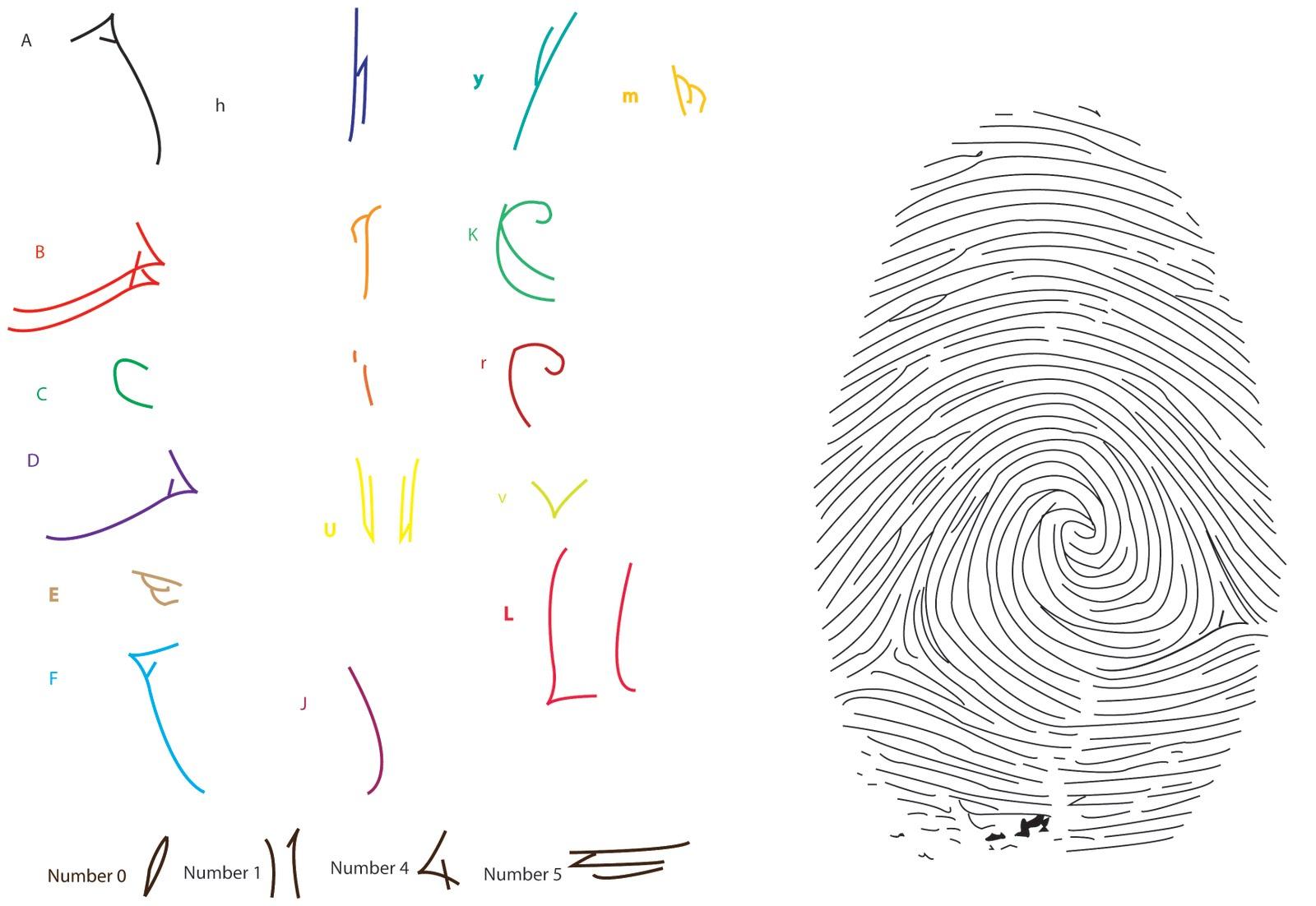http://4.bp.blogspot.com/_BSwT0OnmXiM/S8H-piXemTI/AAAAAAAAAKs/TqBF-ZlT6Rw/s1600/letters+found+out+of+fingerprint.jpg