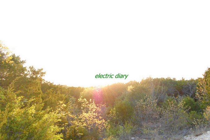 electric diary