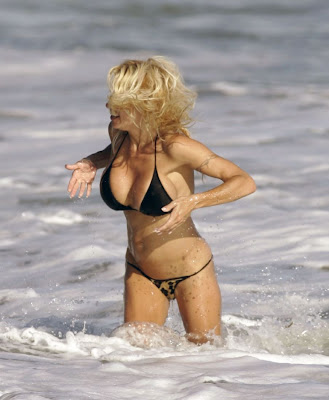 Pamela Anderson big boobs