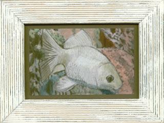 rybka żółta