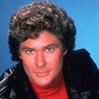 The Top Ten David Hasselhoff Photos