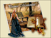 Premio Momentos