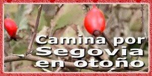 Camina por Segovia en Otoño
