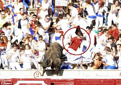 Spain bull rampage