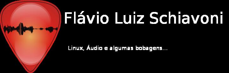 Flávio Luiz Schiavoni