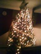 Un árbol bien iluminado