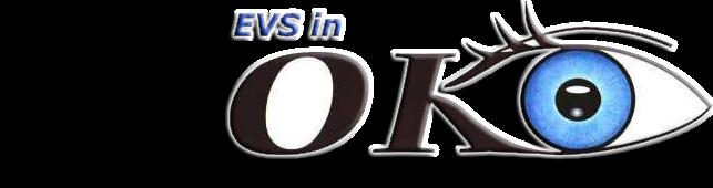 EVS in OKO-centre