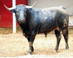 "'Insurgente,"" 405 Kilos,  Will Be Killed This Afternoon in 10th Novice Bullfight Mexico City"