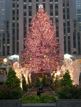 Favorite New York Spot