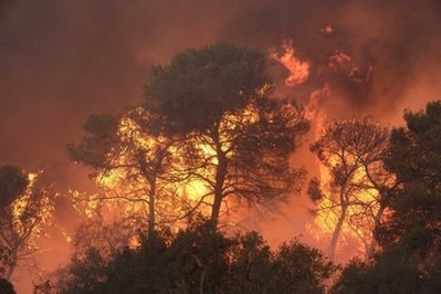 ISRAELI MOUNT CARMEL FOREST FIRE, EXTINGUISHED!