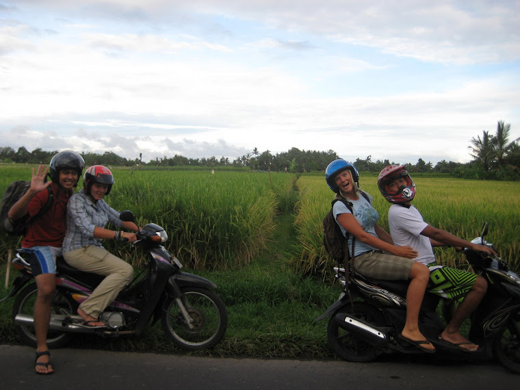 You can imagine riding a motorbike through the rice patties feels pretty good