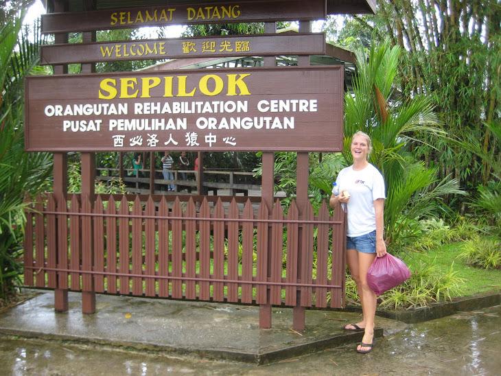 Orangutan Reserve