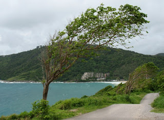 View towards Naiharn Beach, 15th September