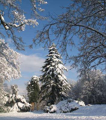 Snowy England, January 2010