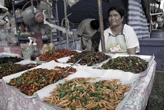 Fried insects for sale