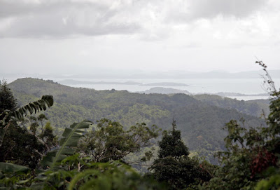 View looking NE from the highest hill in Phuket