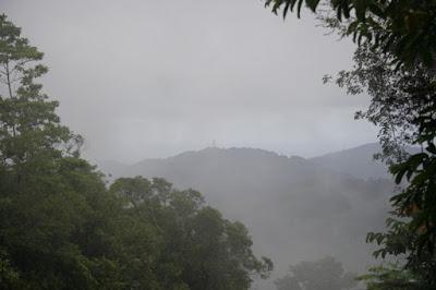 View looking towards the Big Buddha