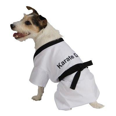 Karate Dog Story
