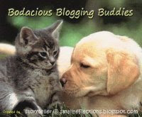Bodacious Blogging Buddies Award!