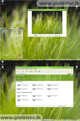 download tema xp, download tema windows, tema untuk xp, theme windows xp, theme xp, download theme xp, theme for xp, thema windows xp, theme for xp, theme pc, tema xp terbaru, theme windows xp, Download Grass Theme for XP
