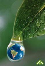 Bicentenario verde