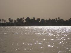 Nilo desde la ventana