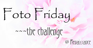 Foto Friday Challenge