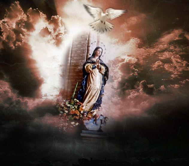 http://4.bp.blogspot.com/_Bk78vvrn6wQ/TGcUuJ2yh1I/AAAAAAAAAfg/BHtnBOac50g/s1600/LA+ASUNCI%C3%93N+DE+MARIA+PARA+EL+BLOG++.jpg