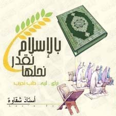 الحكم المصري الاسلامي