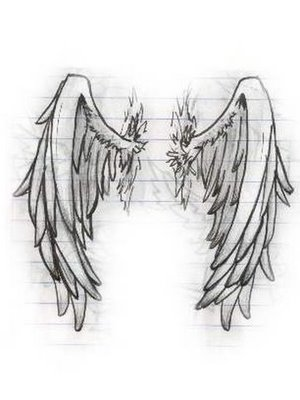 angel wings have three prominent feathers on each wing don t ask me ...