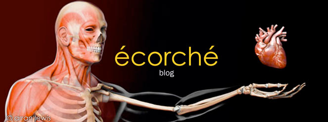 ecorche medical anatomical scientific 3D illustration