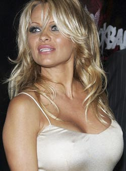 Pamela Anderson is more than $1 mn in debt