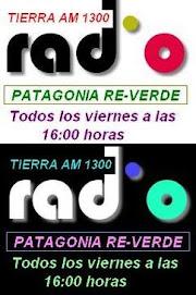 Patagonia RE-VERDE