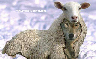 Mormonism is a wolf in sheep's clothing... SEARCH THE SCRIPTURES (John 5:39)