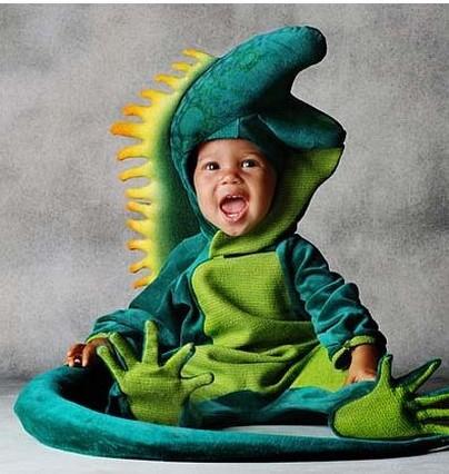 Cute baby like green lizard dressing picture