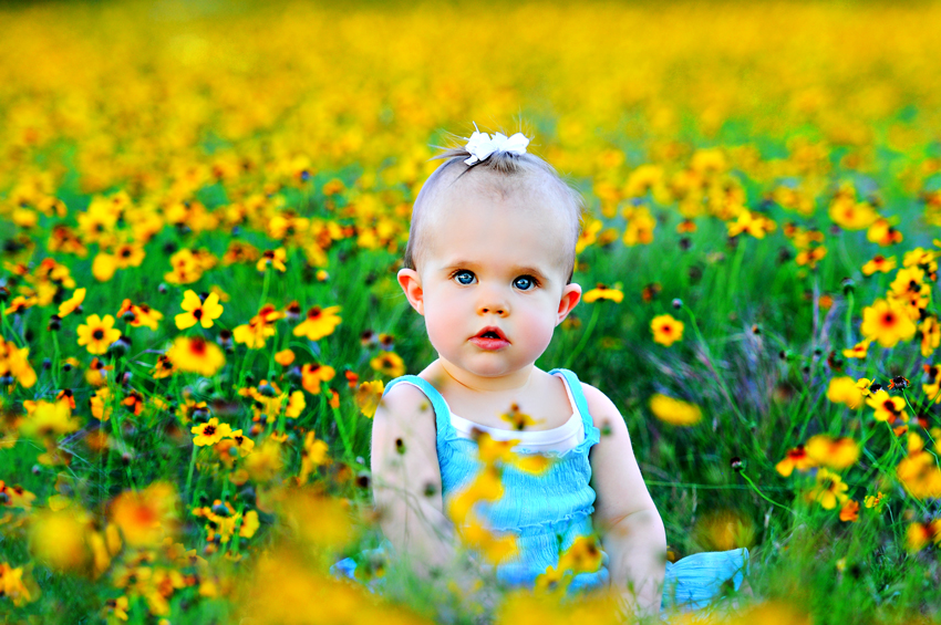 very Cute Baby girl in flowers garden photo