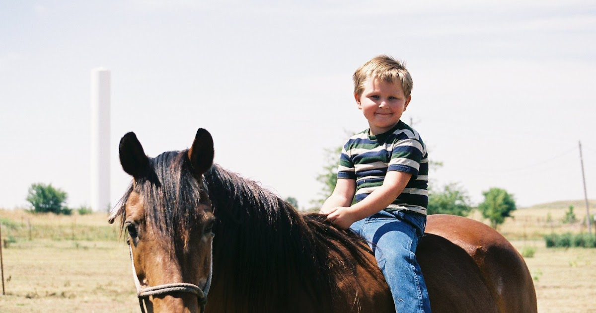 essay horse kids Look at most relevant horse essay for kids from india websites out of 29 million at keyoptimizecom.